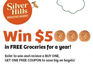 Win-Free-Groceries-one-year