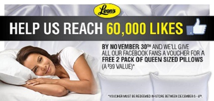 2 pack pillows from Leons