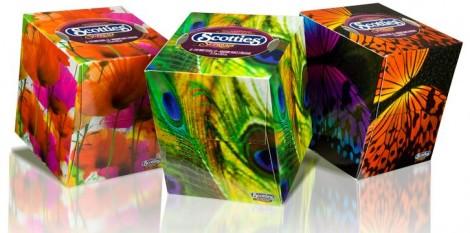 scotties-cube-design-contest